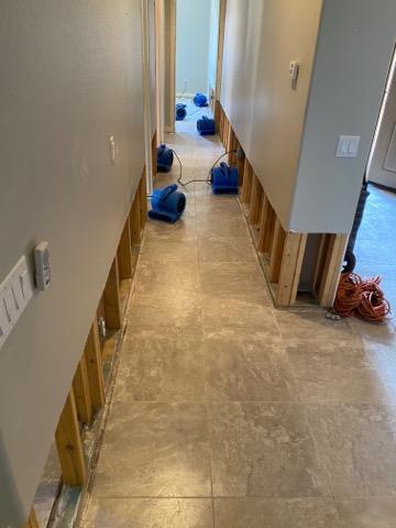 Mold Remediation in Phoenix AZ