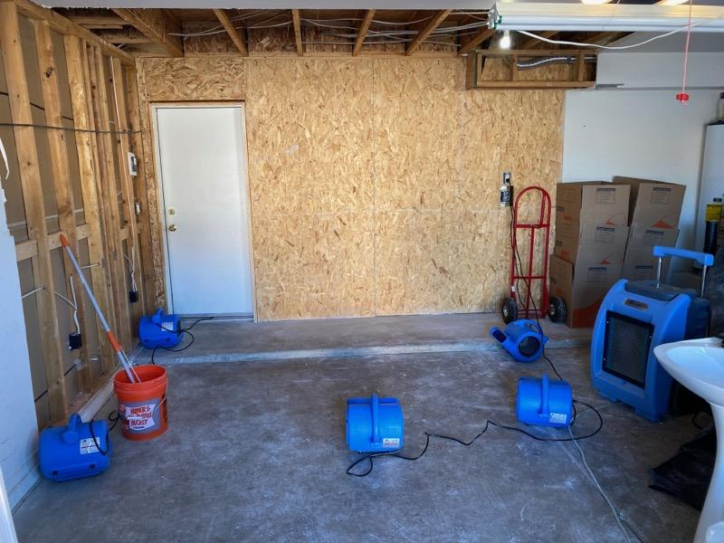 Mesa AZ Mold Remediation Company