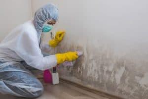 Gilbert Arizona Mold Remediation and Restoration