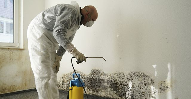 Mesa Arizona Mold Remediation and Restoration